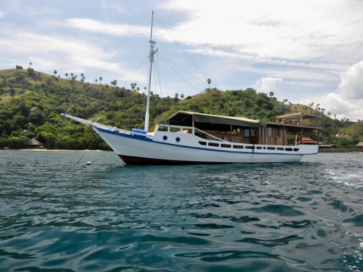 Boat tour komodo – Memorable Experience
