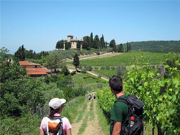 The Most Impressive Tuscany Tours